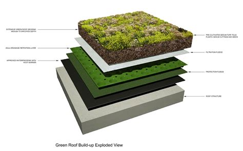 section of green roof pin green roof section on pinterest