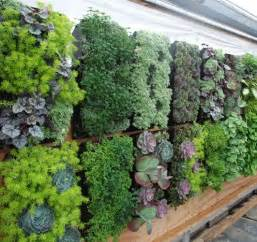 Vertical gardens small space urban gardening how to maximize your