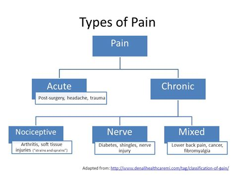 pain management and prevention of drug misuseabuse ppt