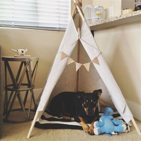 dog teepee bed pinterest the world s catalog of ideas