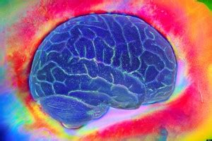 cerebrolysin drug information, benefits and uses