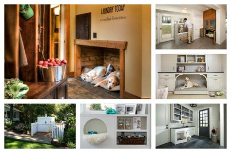 top  luxe dog inspired home renovations