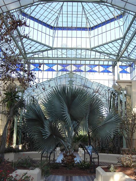 palm house botanic gardens the top 10 things to do and see in adelaide australia
