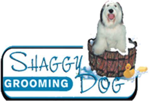shaggy grooming shaggy grooming grover ca 93433 805 481 6146