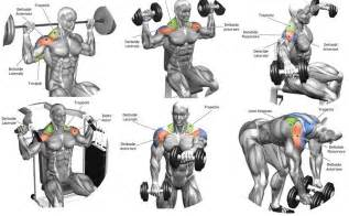 best shoulder workouts for all of you all bodybuilding