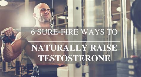 healthy fats to raise testosterone 6 sure ways to naturally raise testosterone heromuscles