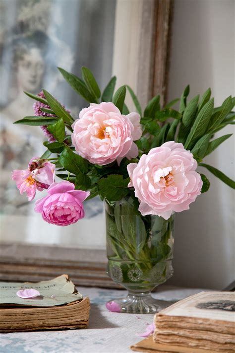 Cabbages Roses New Website by Living Beautifully Strutt Lobster And Swan