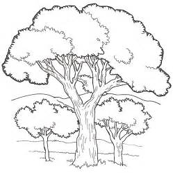 tree to color coloring book trees coloring home