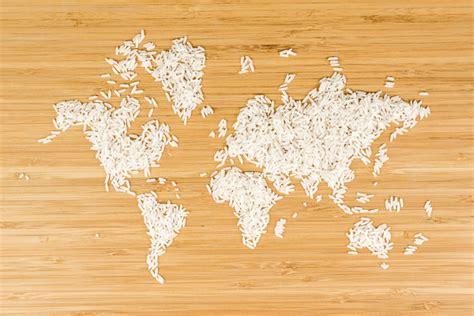 diversi tipi di i diversi tipi di riso dietaland