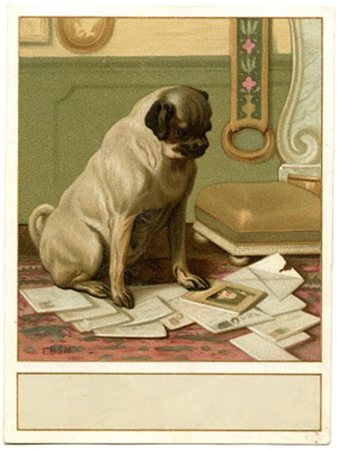 vintage image cute dog  mail label  graphics fairy