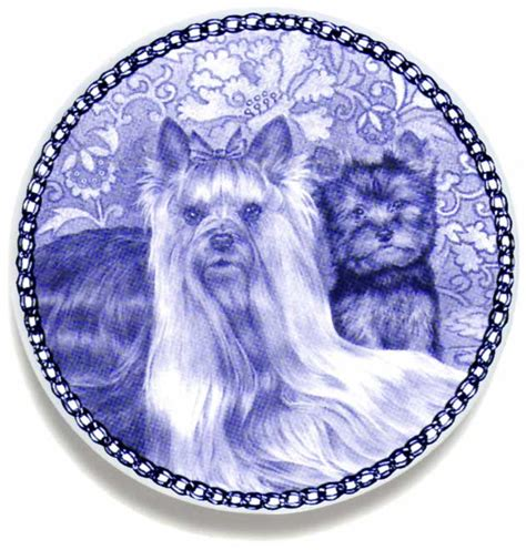 are yorkies family dogs terrier family blue plate