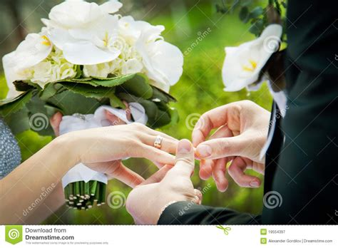 Wedding Ring Exchange Clipart by Exchange Of Rings Royalty Free Stock Photography Image