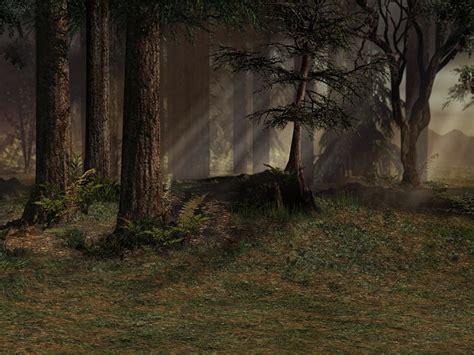 background forest trees  image  pixabay