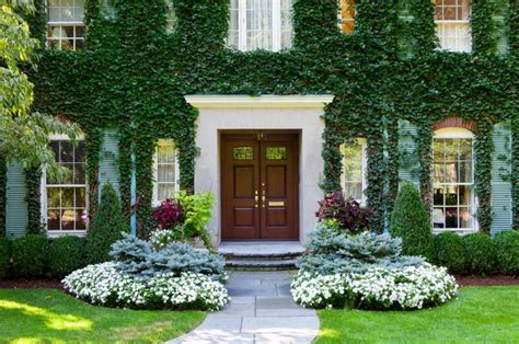 house landscape pictures vine covered walls let you enjoy the outdoors for the best