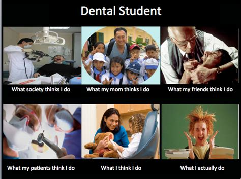 Dental Assistant Memes - dental student memes image memes at relatably com