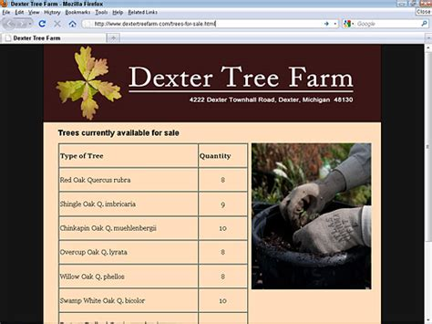 design html page showing forms and frames dreamweaver when should you use tables frames div tags