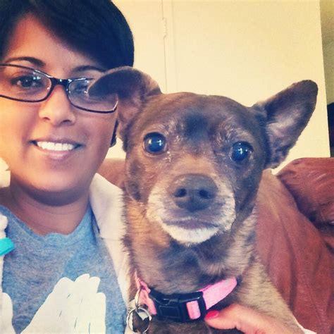 creature comforts pet care creature comforts pet care 806 photos 63 reviews dog