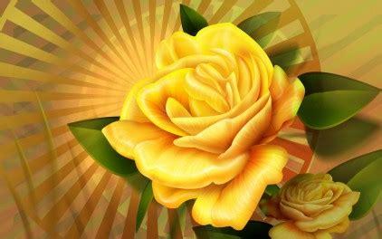 wallpaper bunga mawar kuning wallpaper bunga mawar kuning cantik picture wallpaper