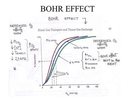 bohr effect diagram gas transport of respiration ppt