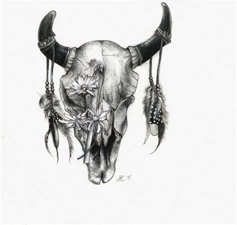 cow skull cow skull drawing www imgkid the image kid has it