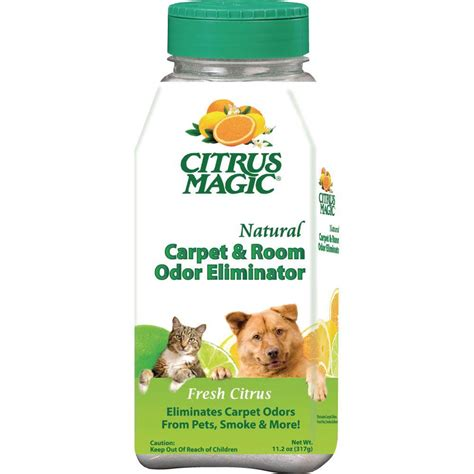room shocker home depot citrus magic 11 2 oz fresh citrus pet carpet cleaner and room deodorizing powder 3 pack