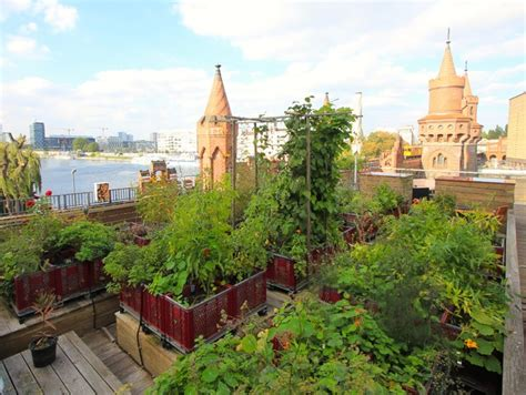 gartenbesuch urban gardening mit blick auf die berliner