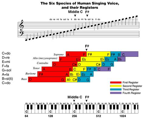 vocal pattern definition opinions on vocal register