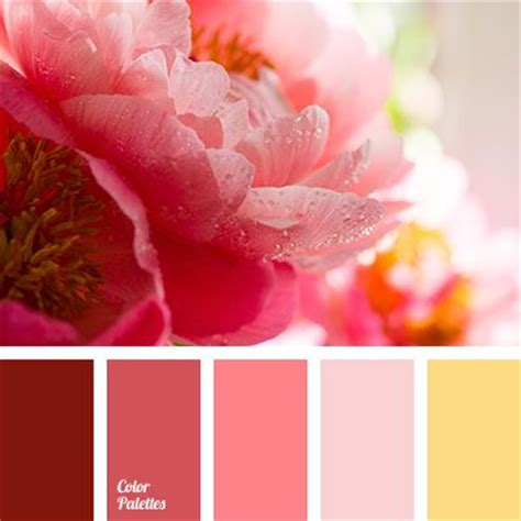 colors that match pink 41 best images about color palette on pinterest paint