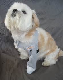 leg protector for a more comfortable recovery