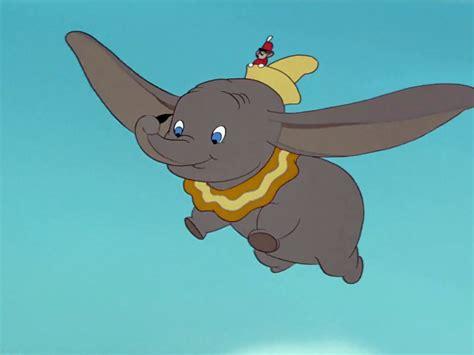 Dumbo L by Flying Dumbo