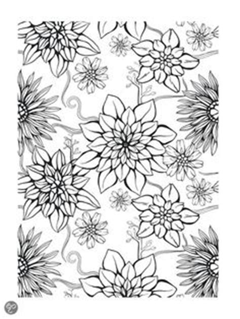 stargazer space colouring book 1908072776 lily coloring pages stargazer lily graphite on paper marge sjoden a single flowers to