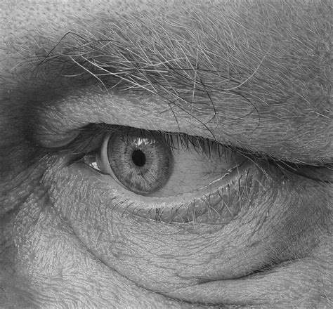 detailed pencil drawings wide open the detailed pencil drawings of flavio