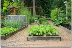 raised bed vegetable garden layout ideas