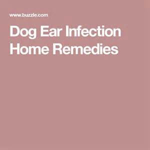 m 225 s de 1000 ideas sobre ear infection remedy en