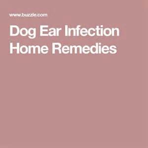 ear infection home remedy m 225 s de 1000 ideas sobre ear infection remedy en