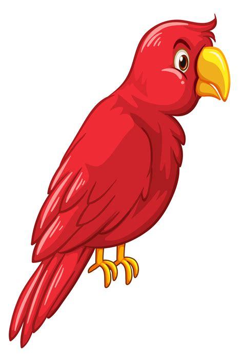 red bird  white background   vectors
