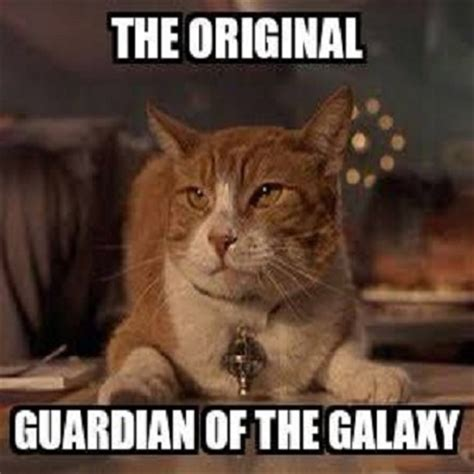 guardians of the galaxy funny meme memes