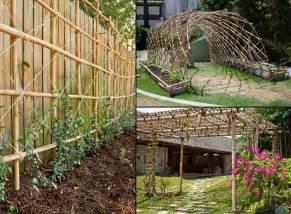 bamboo trellis garden ideas pinterest