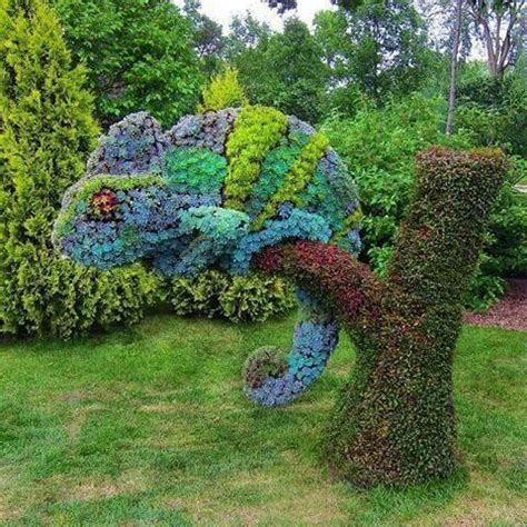 montreal botanical garden topiary amazing succulents topiary in the shape of a chameleon