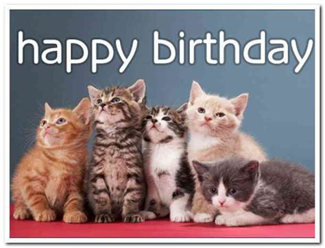 Email Birthday Cards Free Email Birthday Cards Cats Rusmart Org