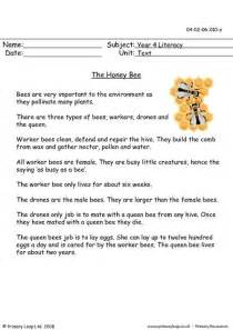 primaryleap co uk the honey bee worksheet insect a