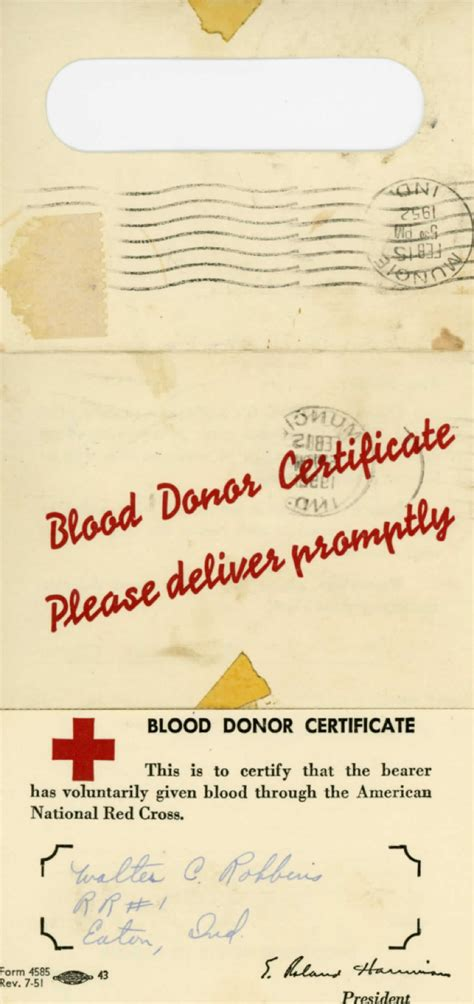 donation certificate templates download free premium