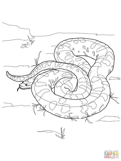 Burmese Python Coloring Page