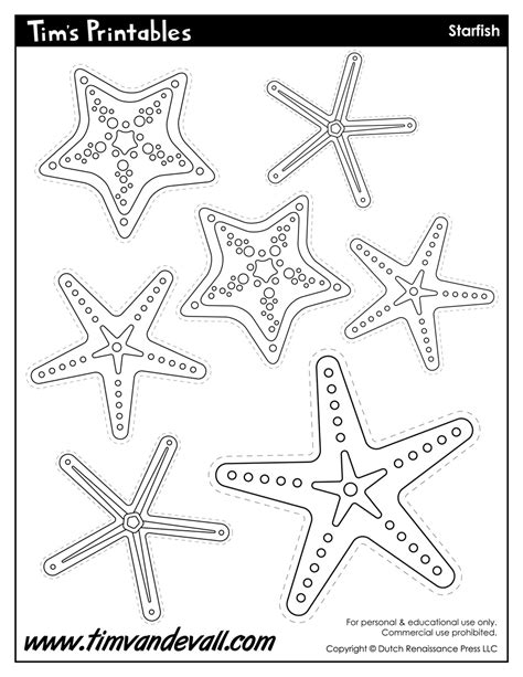starfish template sea star templates for preschool art