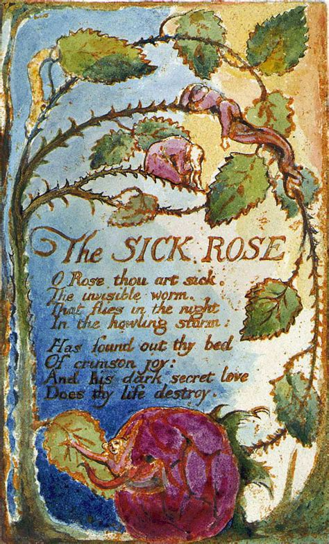 theme sick rose william blake the sick rose let me see you writhe