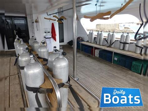 boat prices in egypt egypt motor yacht for charter daily boats charter
