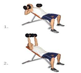 how to bench with dumbbells step exercises and fitness chest exercises step 4