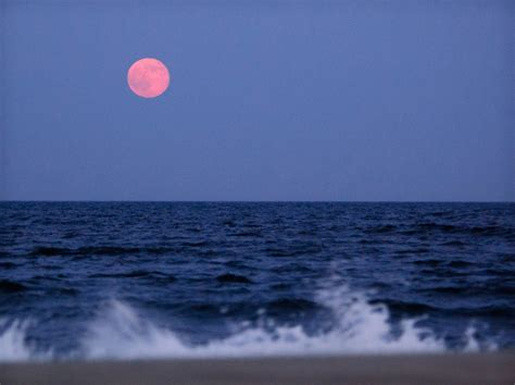 there s a strawberry moon tonight but what even is that there s going to be a super rare strawberry moon tonight