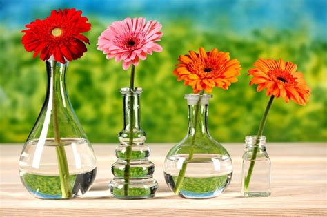Cleaning Vases by 5 Ways To Clean A Vase With A Narrow Neck Home