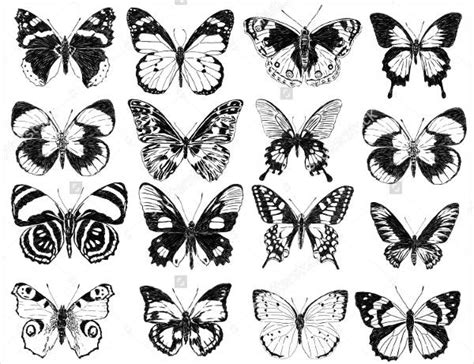 9 best butterfly silhouettes free psd vector eps